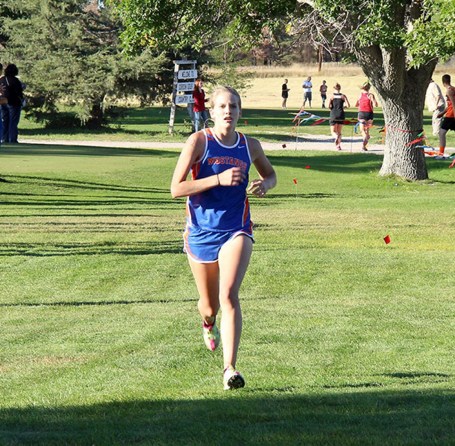 Dani Wellnitz finished second at the district meet in Bayard last Thursday.