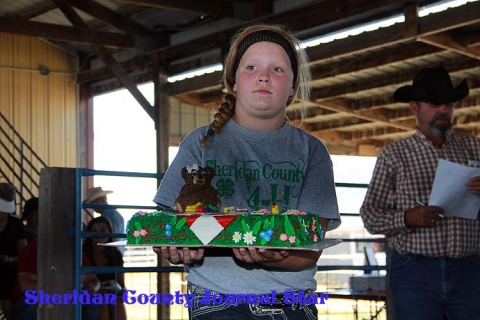 4-H Cake/Cookie Sale