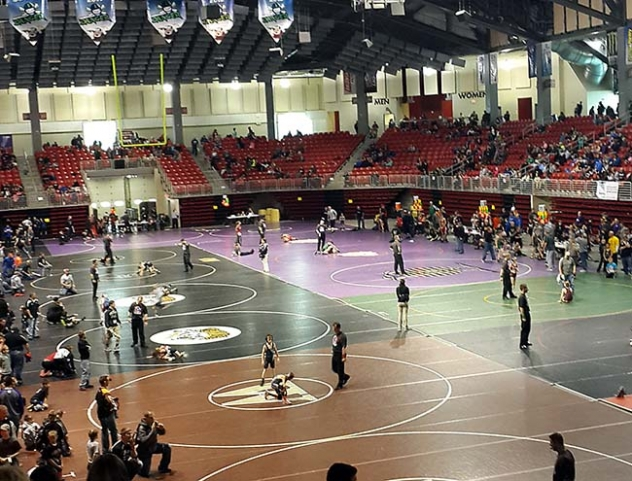 Three G-R youth wrestlers place at state