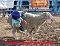 Mutton Busting 2017