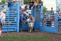 Mutton Bustin' and Trailer Loading 2018 SCF&R