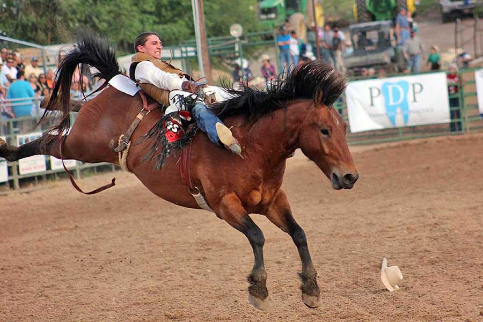 Area cowboy rides high at  College National Finals Rodeo